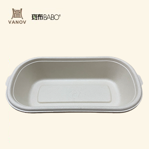 Bamboo Compostable Disposable Salad box Featured Image