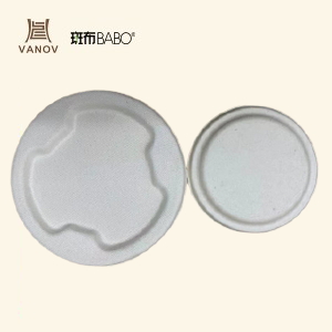 BAMBOO ECO-FRIENDLY BIODEGRADABLE BOWL LID (DIFFERENT SIZE)